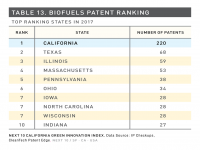 Table 13 Biofuels Patent Ranking